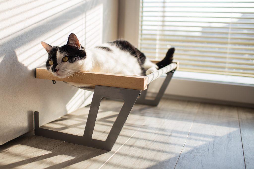 legowisko dla kota