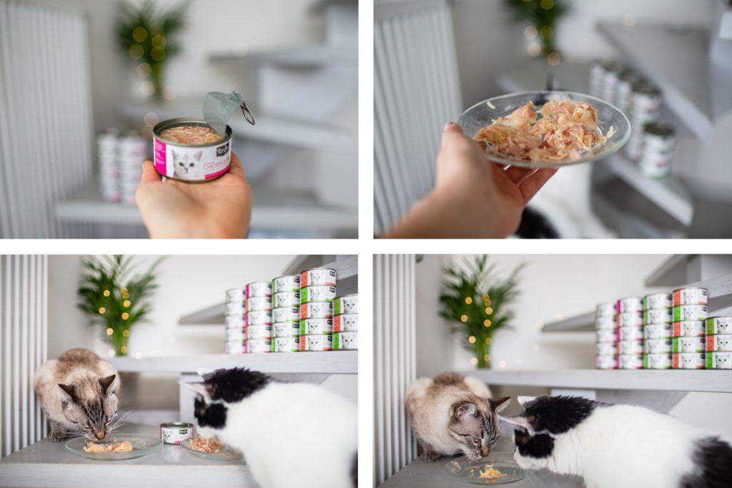 karma filetowa Kit Cat