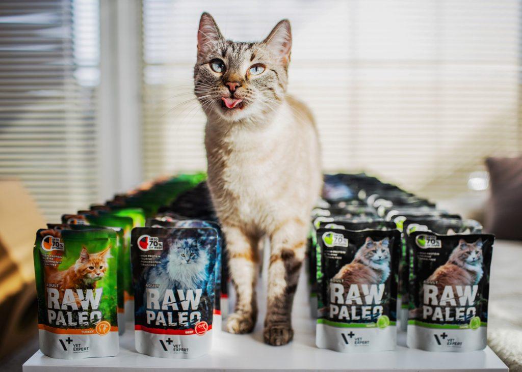 karma dla kota raw paleo