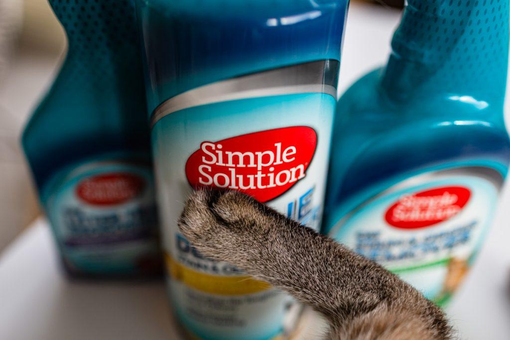 utrzymanie czystości przy kocie