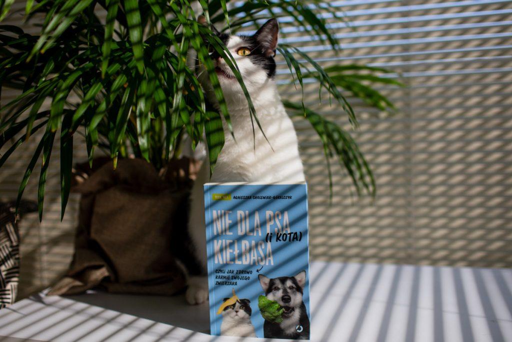 """""""Nie dla psa (i kota) kiełbasa"""" - recenzja"""