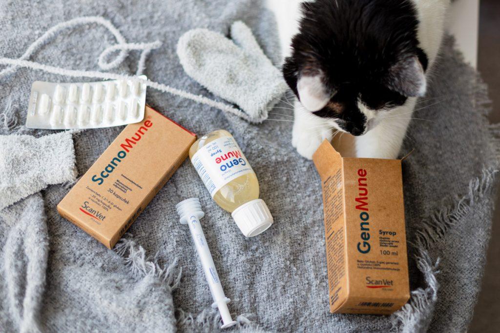 Beta-glukan dla kota