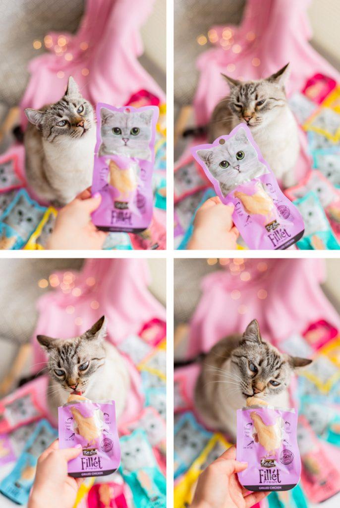 Przekąski KitCat